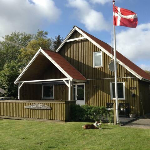 Hyggeligt sommerhus i Bork tæt ved jollehavn