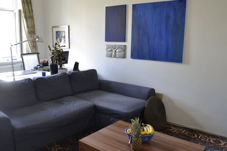 Neat, bright, apartment near downtown for 1 to 4 - Lakás