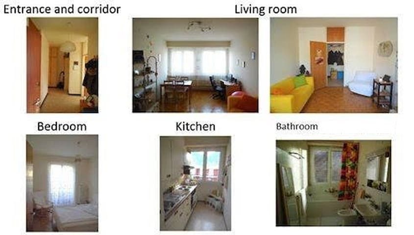 Entire 2.5-room apartment, middle of Lugano