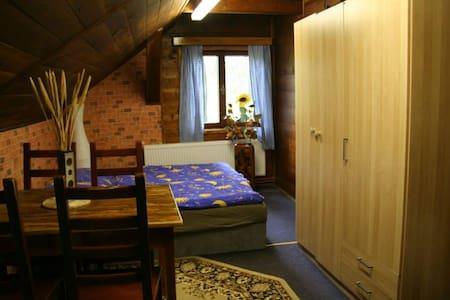 pokoj v příjemné chatě s farmičkou pro děti - Vítkovice - Lakás