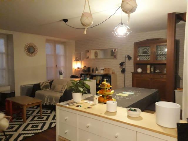 chambre privée dans appartement avec vue sur Loire