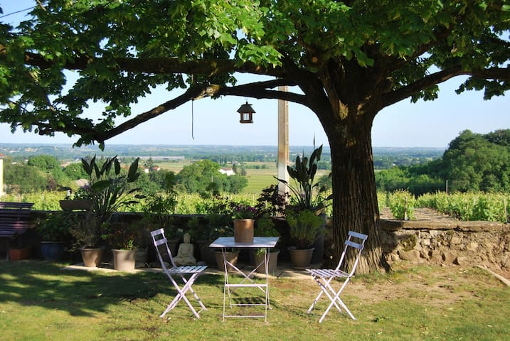 DOMAINE GEOFFRAY, maison vigneronne - Saint-Jean-d'Ardières - Bed & Breakfast