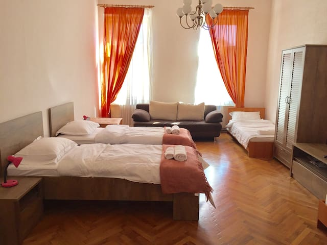 Ultracentral apartment, Iuliu Maniu