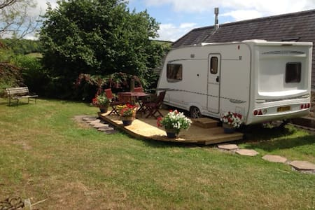 A Beautifully quiet & Unique Caravan experience. - Ashburton - Overig