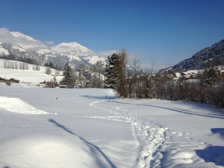 ...take a walk in untouched snow..