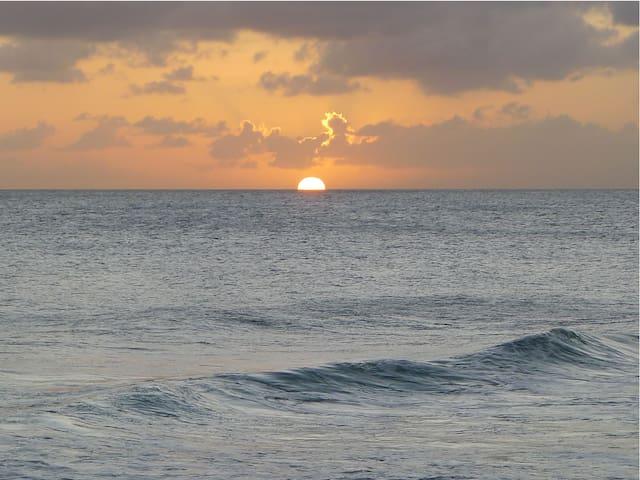 Coral Bay #2 - Beachfront Barbados