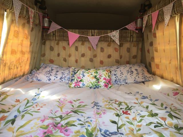 Comfortable, Cute & Cheap!