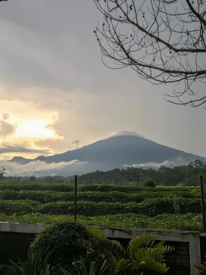 Desa Cilimus dgn view Gunung Ciremai