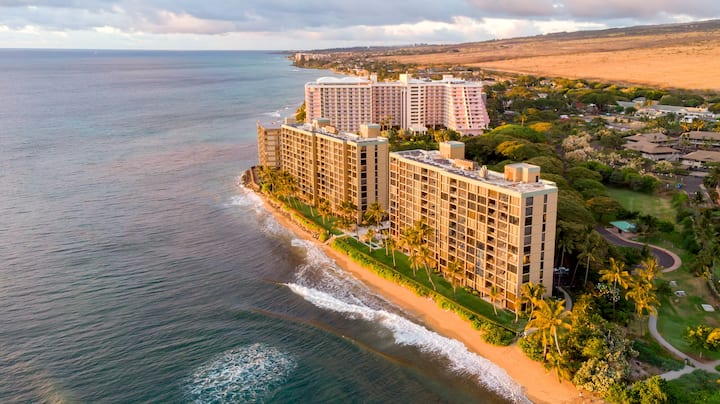 The Mahana Suite 815 - On The Beach & Oceanfront