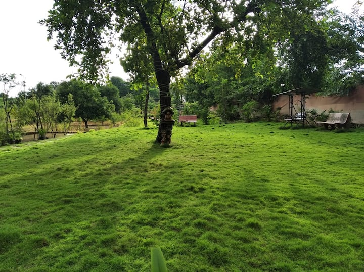 Best Resort at Shahpur with Natural Ambience.