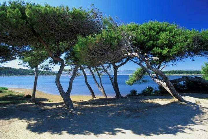 Joli T2 avec terrasse à seulement 50 m de la plage