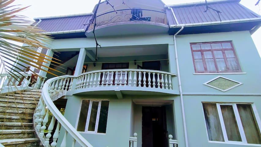 PARTIZAN house