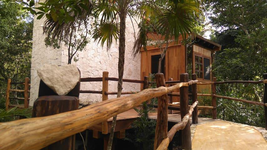 Unique Jungle CabinB&B at Chaktunche. Chak Naa - Puerto morelos