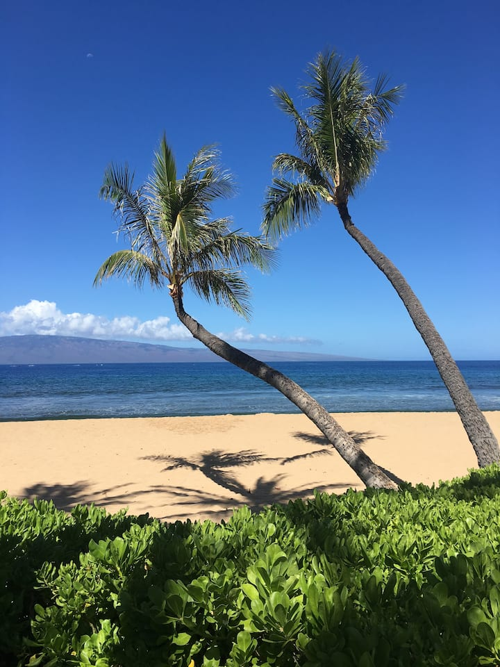 Westin Kaanapali Ocean View June 13, 2021