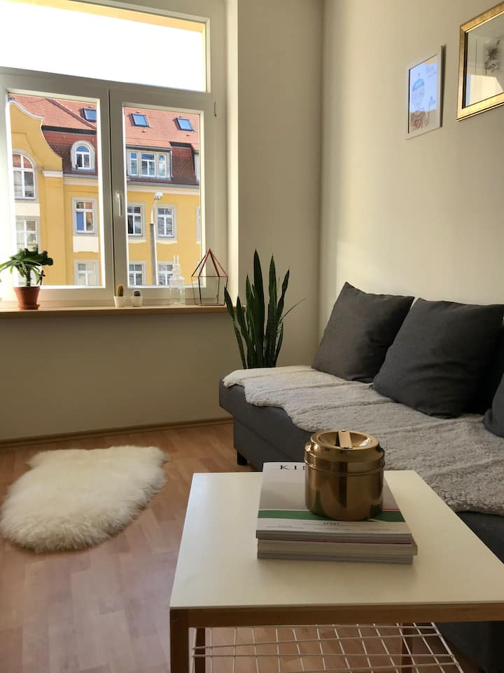 Sonnige ruhige Wohnung Dresden - nahe Zentrum