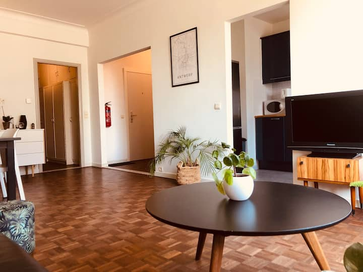 Antwerp Central City Apartment