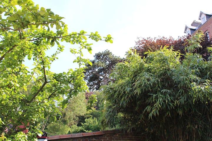 Dieppe, maison de ville avec jardin clos