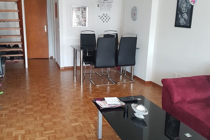 Charming duplex apartment 15 minutes from center - Bern - Wohnung