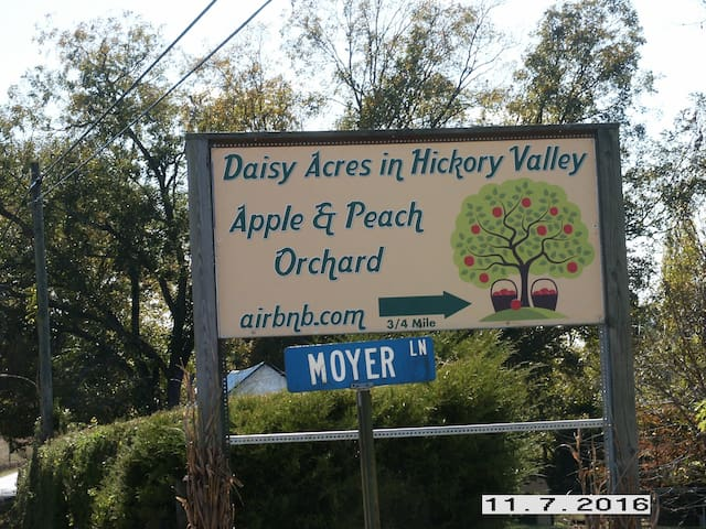 Daisy Acres in Hickory Valley - Sparta - Casa de huéspedes