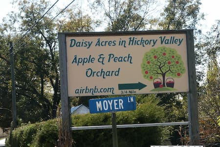 Daisy Acres in Hickory Valley
