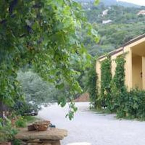Appartamenti nel Parco delle Madoni - Castelbuono - Bed & Breakfast