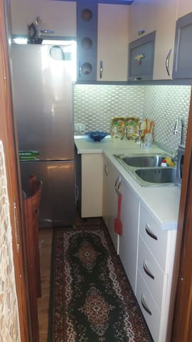 1+1 Apartment Flat near downtown .Fully renovated