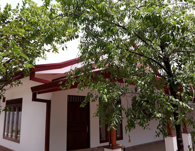 Newly Developed House for Rent in Malabe