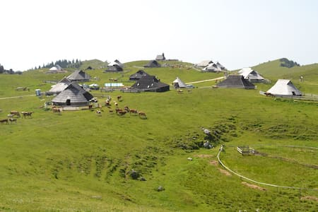 Cottage in beautiful nature - Velika planina - Velika Planina - Chatka