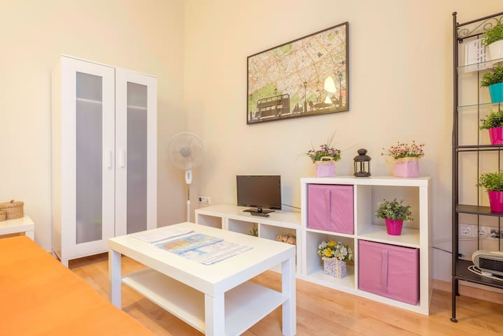 In the centre of the old town - Apartment Alameda Centro Apart 1 A