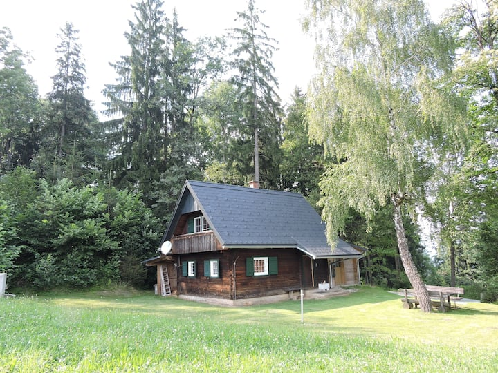 House in the middle of a forest, Stille und Natur!