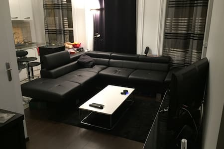 Bel appartement T2  berges du Rhône - ลียง - อพาร์ทเมนท์
