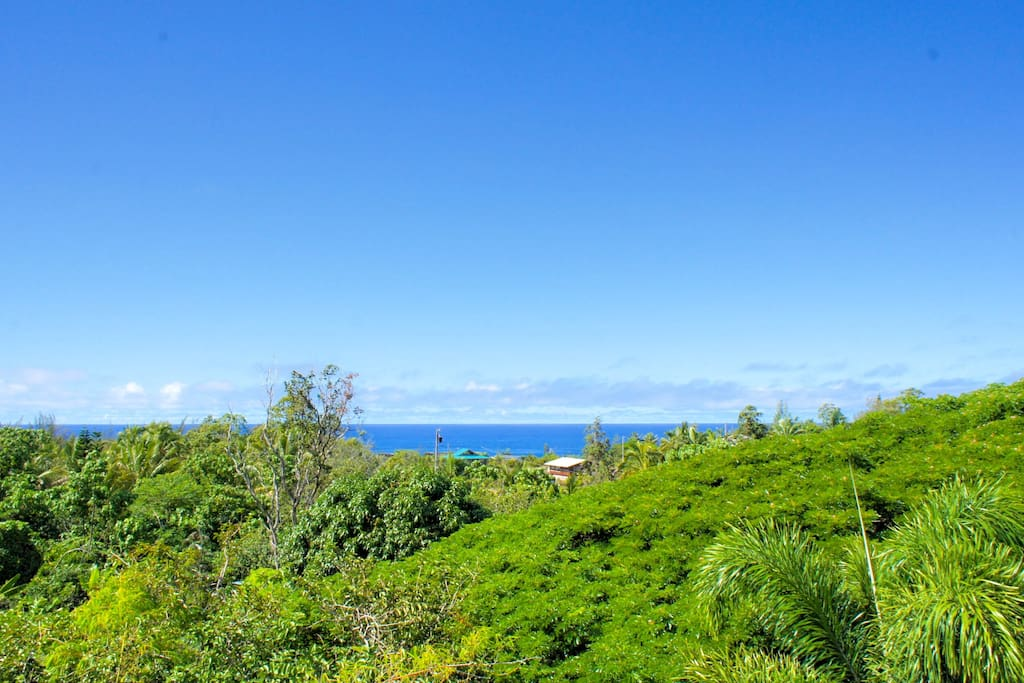 Escape2Puna is just a 10 minute walk from Kehena Black Sand Beach