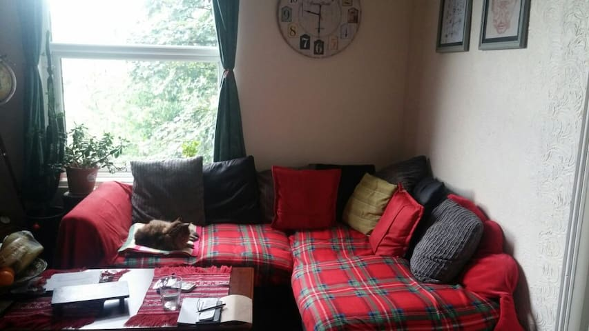 Cosy double room right next to lovely Hyde Park - Leeds - Wohnung