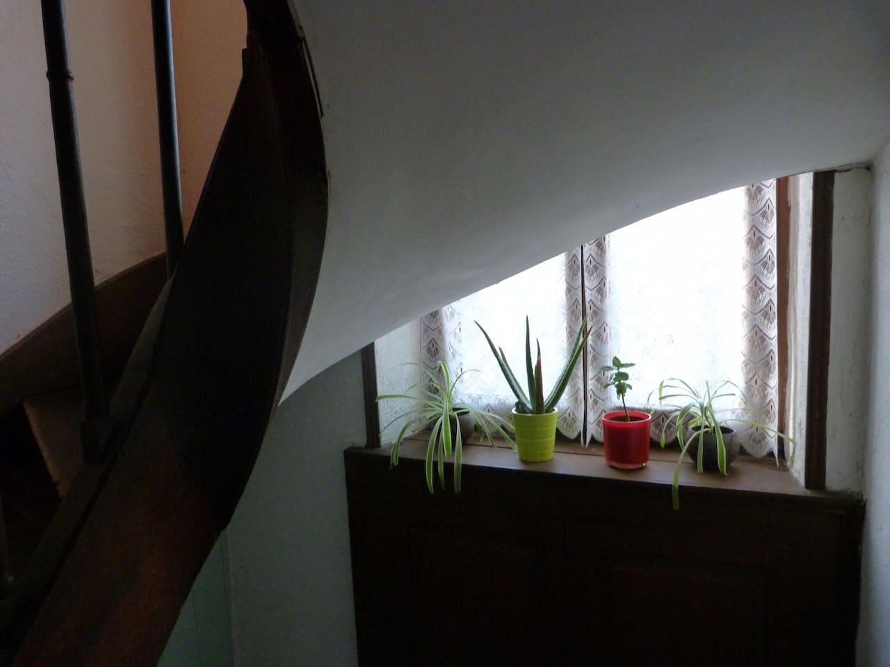 L'escalier qui vous emmène dans votre chambre