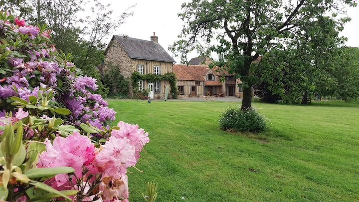 Dragonfly Cottage - Cosy, charming and traditional