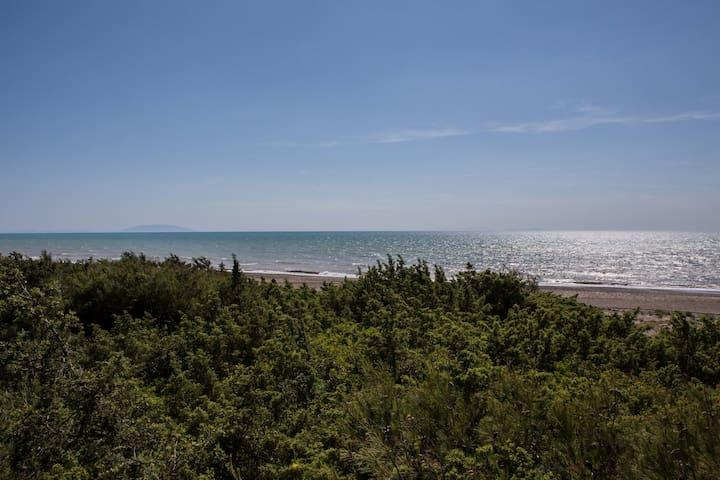 Beachfront Tuscany