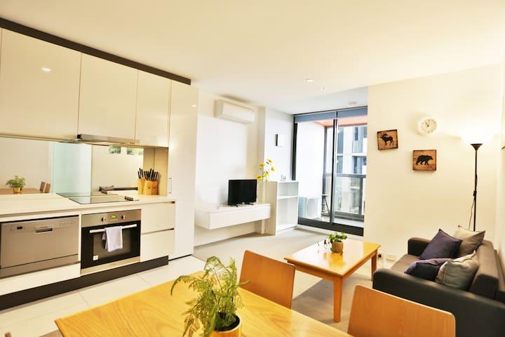 Best Location One bedroom Modern Apt in CBD
