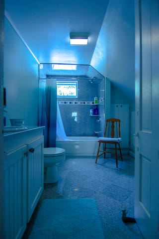 Remodeled bathroom, clean and roomy !!
