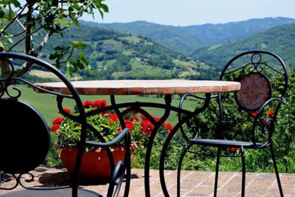 garden panorama
