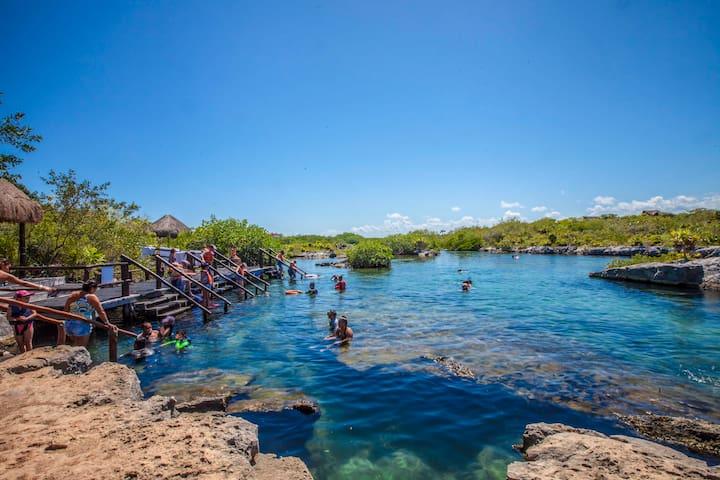 Cenote Yal-Ku. Entrance 3 minutes walking from house.