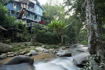 The Escape House Maekampong Chiangmai: 1 bedroom