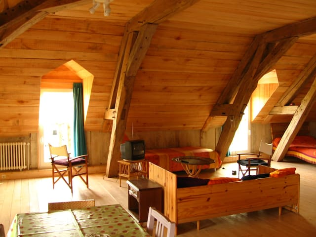 Nice wood loft in front of the lake - Géraudot