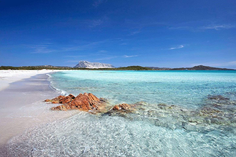 Veduta della spiaggia la Cinta e isola di Tavolara