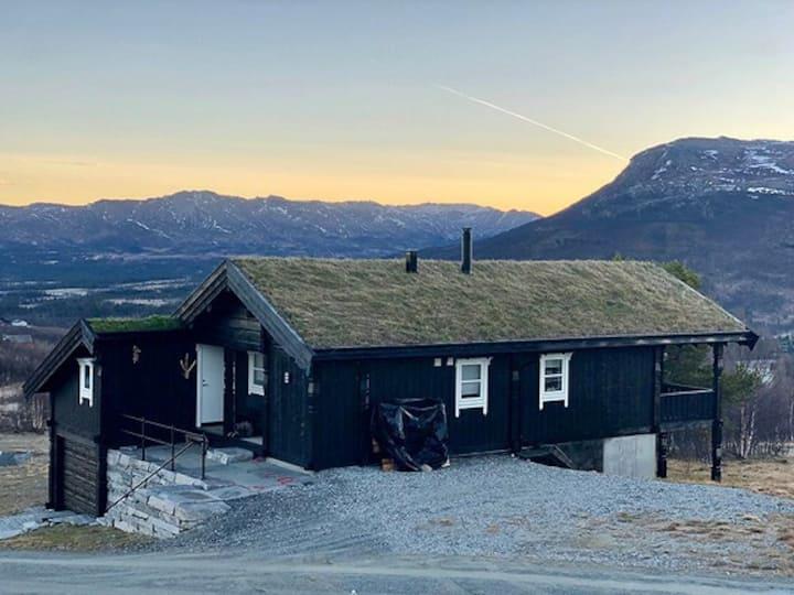Stor, ny hytte på Nerskogen