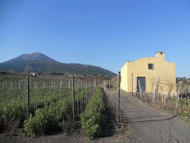 SORRENTINOVINI COUNTRY HOUSE - Boscotrecase - บ้าน