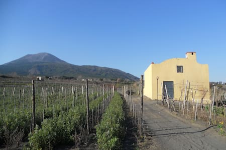 SORRENTINOVINI COUNTRY HOUSE - Boscotrecase