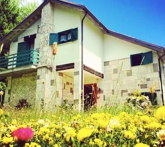 Villa Immersa nel verde - Pescasseroli