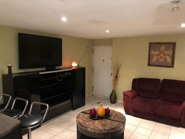 Foxy's Cozy Hide Away!!!!  ***MINUTES FROM JFK***