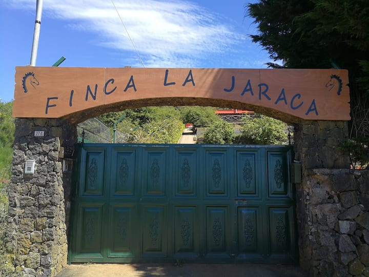 FINCA LA JARACA 2. For lovers of nature