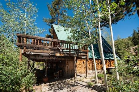 Relaxing Donner Lake cabin - 特拉基 - 独立屋
